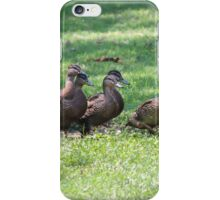 duck in a row  on lake iPhone Case/Skin