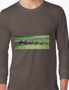 duck in a row  on lake Long Sleeve T-Shirt