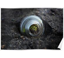 Moss inside glass bottle Poster