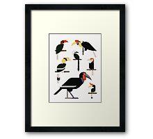 Hornbills Framed Print