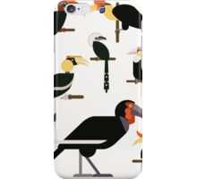 Hornbills iPhone Case/Skin