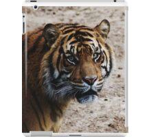 DC Tiger iPad Case/Skin