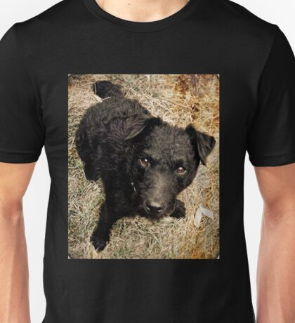 Fergus, Wire-Haired Patterdale Terrier Unisex T-Shirt