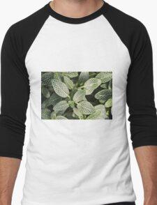 Leaves of Green Men's Baseball ¾ T-Shirt