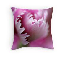 Macro Photo Pink Flower