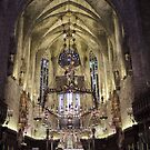 Palma Majorca Cathedral by mikequigley
