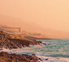 Jordan. Dead Sea. Sunrise. Sticker