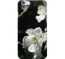 Plum Blossoms iPhone Case/Skin