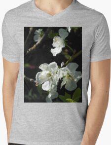 Plum Blossoms Mens V-Neck T-Shirt