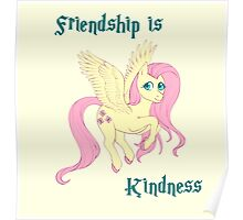 Friendship is Kindness Poster