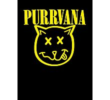 Purrvana Cat Parody Photographic Print