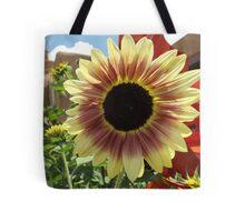 Sunflower Close-up, Santa Fe, New Mexico Tote Bag