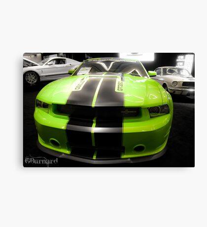 Mustang Love Canvas Print