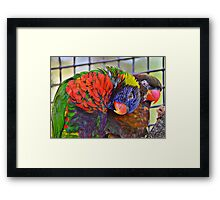BFF Birds of a Feather Forever Framed Print