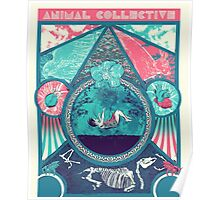 Animal Collective Circus Style Poster