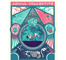 Animal Collective Circus Style Photographic Print