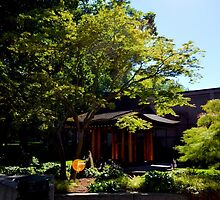 Seattle Japanese Garden by guinapora