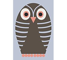 STRIPED OWL Photographic Print