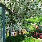 Spring  hideaway by MarianBendeth