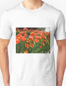 Making an appearance Unisex T-Shirt