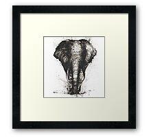 The Elephant Framed Print