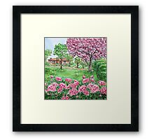 Peonies Season  Framed Print