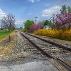 Springtime Along The Tracks by James Brotherton