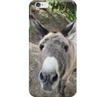Donkey Nose  iPhone Case/Skin