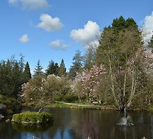 A botanical garden in spring time. by naturematters