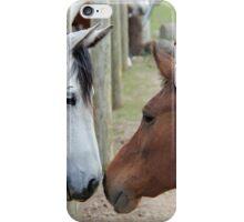 Kissing Horses iPhone Case/Skin