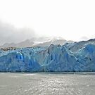 Grey Glacier Panorama by Graeme  Hyde