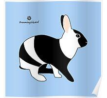 magpie harlequin rabbit Poster