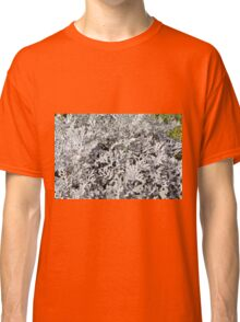 Leaves of ever green plant. Classic T-Shirt