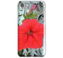 Macro on beautiful red flower in the garden. iPhone Case/Skin