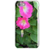 Purple flowers, natural background. iPhone Case/Skin