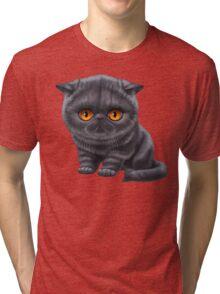 Cataclysm - Exotic Shorthair Kitten - Classic Tri-blend T-Shirt