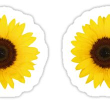 Six Sunflowers Sticker
