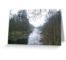Looking down the River Greeting Card