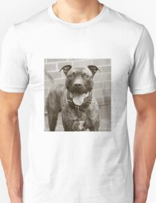 can I play? T-Shirt