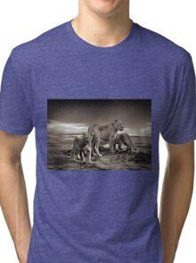 Lion Family Tri-blend T-Shirt
