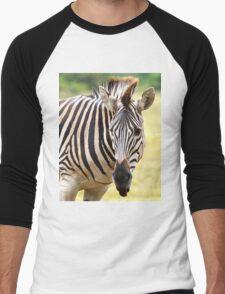 Zebra Men's Baseball ¾ T-Shirt