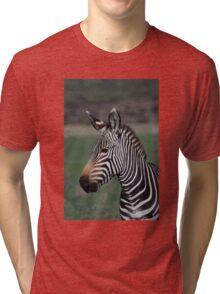 Zebra Style Tri-blend T-Shirt
