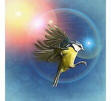 Fantasy Bird Photographic Print