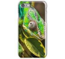 Exotic Reptile iPhone Case/Skin