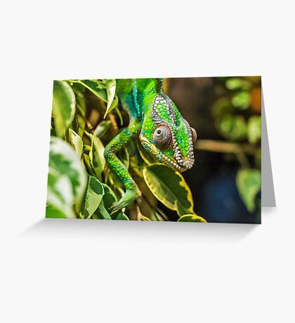 Exotic Reptile Greeting Card