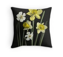 Narcissi of several kinds, Daffodils, Poet's Nar  Throw Pillow
