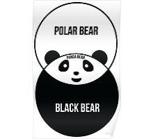Panda Bear: Venn Diagram Poster