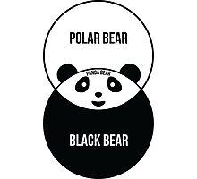 Panda Bear: Venn Diagram Photographic Print