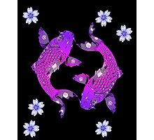 Purple Asia Koi Photographic Print