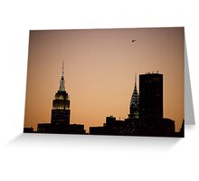 Vol sur Manhattan  Greeting Card